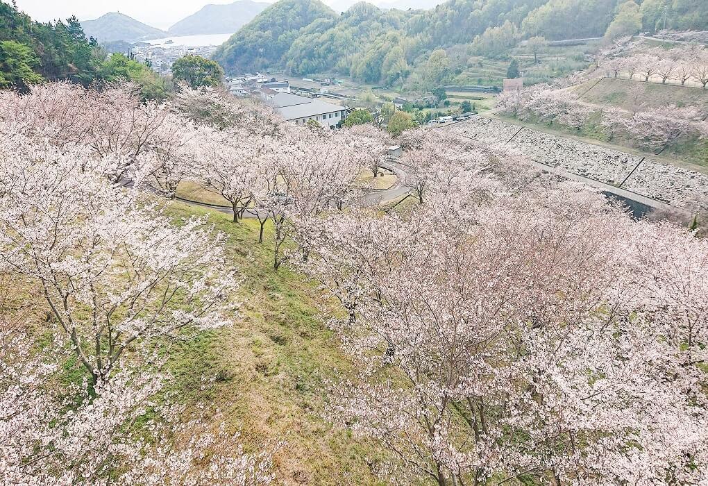 粟地ダム公園