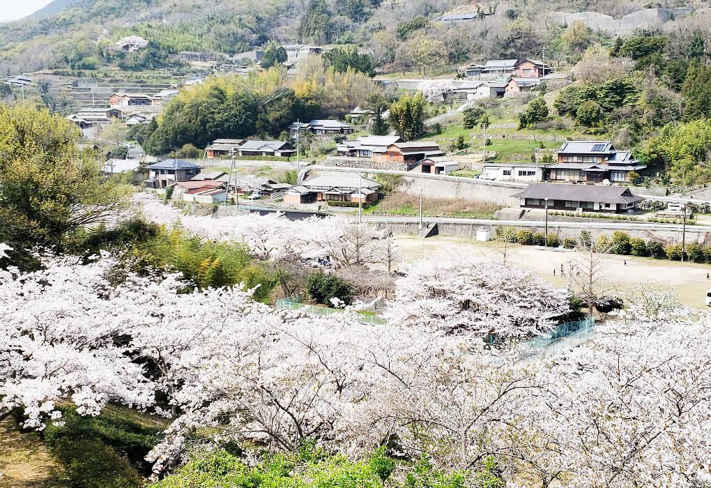 殿川ダム公園